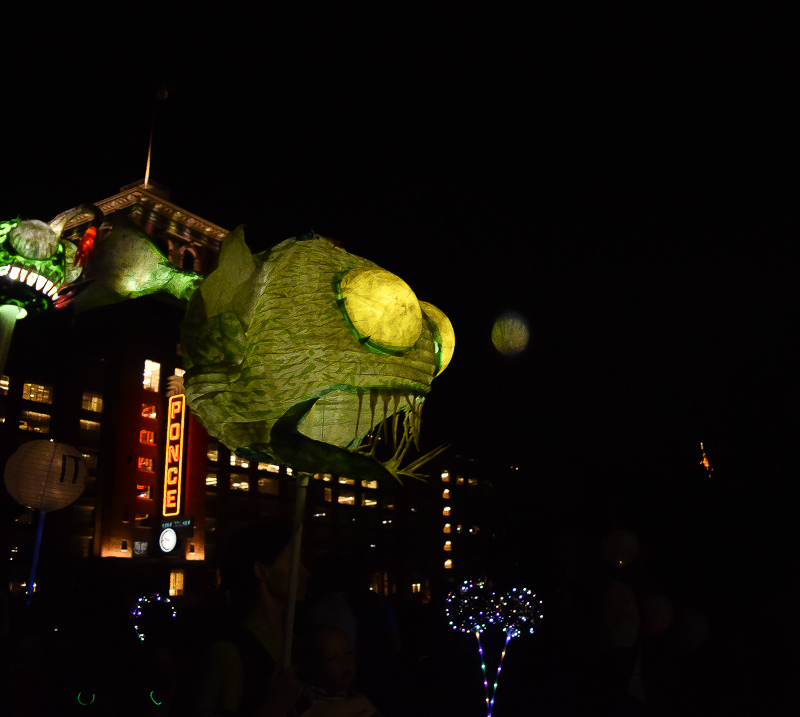 A green anglerfish lantern with a green bulb.